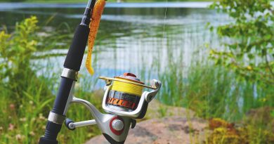 Excellent Fishing Rods for that Perfect Fishing Experience