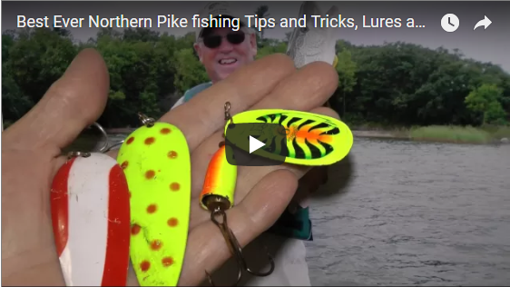 Best Ever Northern Pike fishing Tips and Tricks, Lures and Locations